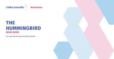 Newsletter Thumbnail, The Hummingbird.